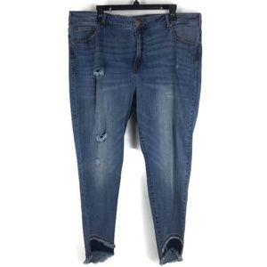 Lane Bryant Frayed Hem Jeans Sz 24 Plus NEW!